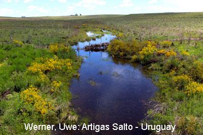 01_Artigas-Salto-km-106_gr