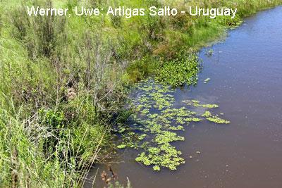 02_Artigas-Salto-km-106