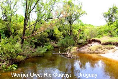 06_Rio-Guaviyu_gr