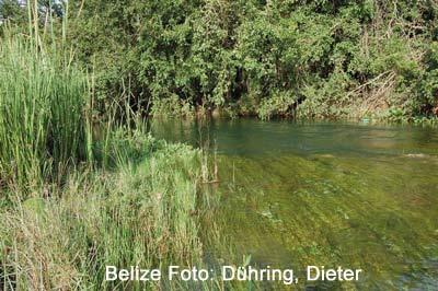 Belize-2012-091