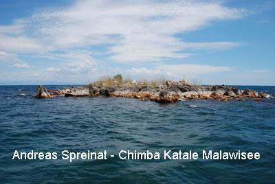 Chitimba-Katale2