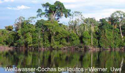 I_11_Peru_Cocha