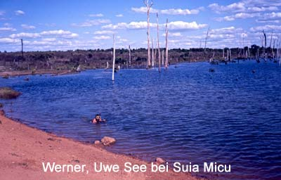 See-bei-Suia-Miçu